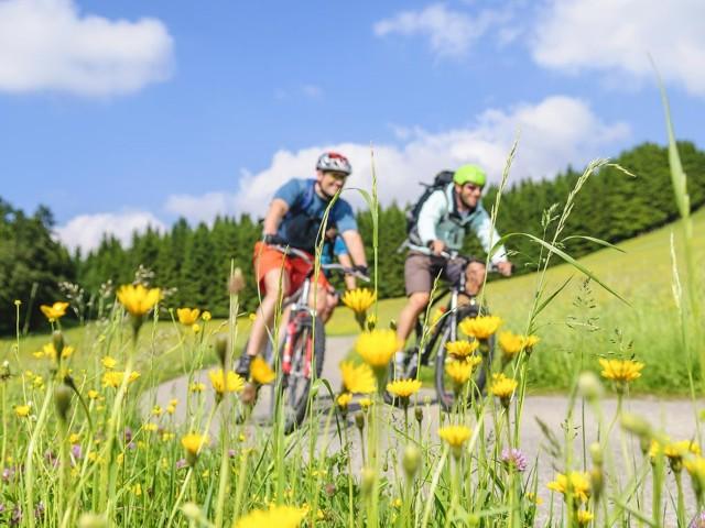 Fahrradtour im Frühjahr